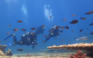 Vacation Amorgos Cyclades Greece