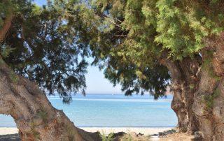 Aegiali Beach Amorgos Cyclades